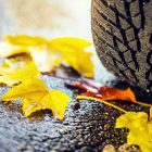 A close-up of a tyre on autumn leaves
